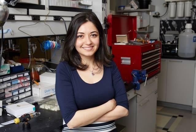 Ghazaleh Ashrafi, Ph.D. (2017 Recipient)