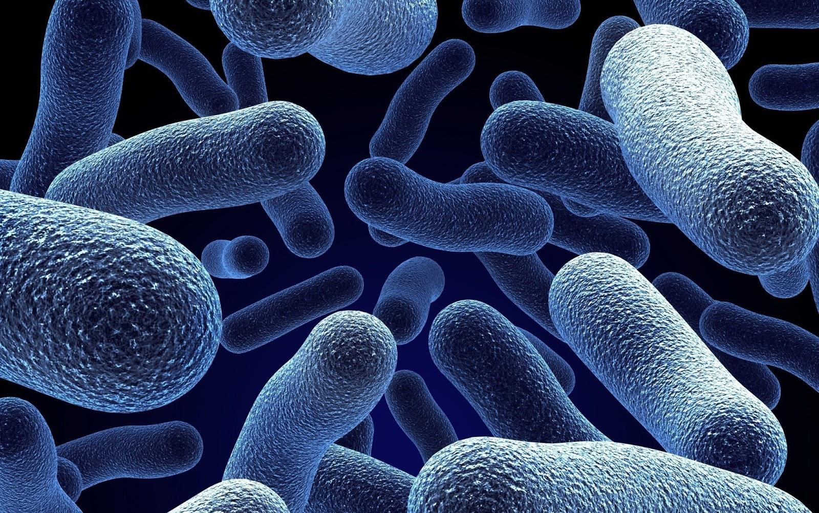 Microbiome Core Image