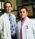 Drs. Hemmings and Herold