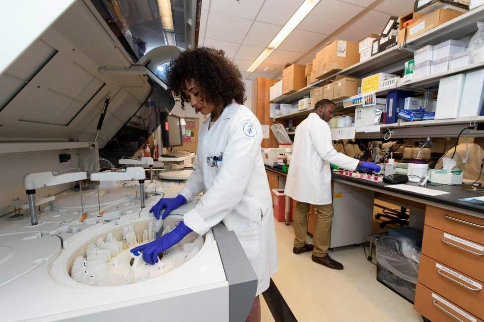 Scientists working on in-house clinical pathology services.